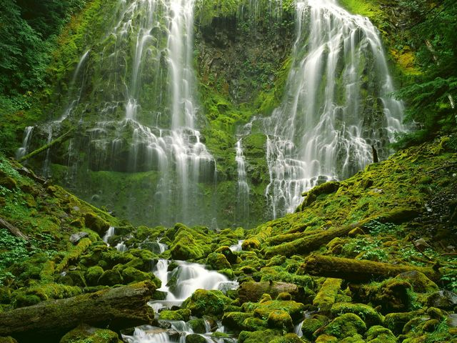 proxy-falls-three-sisters-wilderness-ore